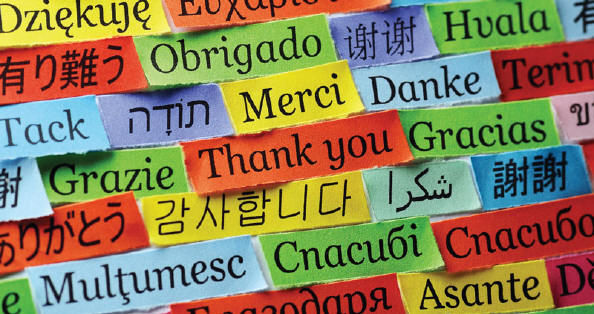 ESOL/ENGLISH AND FOREIGN LANGUAGES