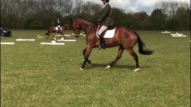 Brand newly launched Eventing Syndicate