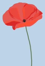 poppy_002.png