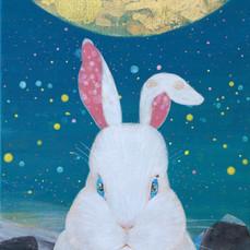 フユウサギ