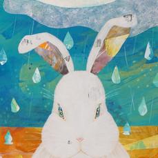 アマツブウサギ