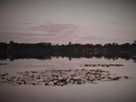 The Kit Lake Solace, June 2021