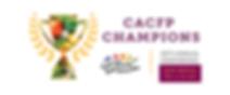 Champions 2020 logo - transparent with v
