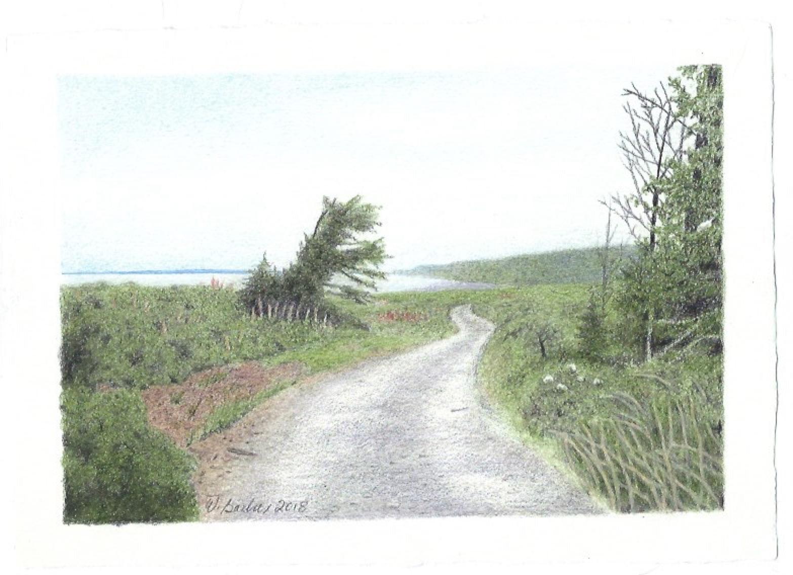 Route sur l'Île Verte