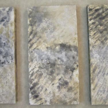 Areias do Deserto, 2009