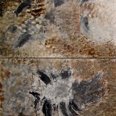 Mãos na Terra, 2004
