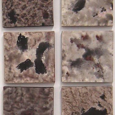 Partes da Criação, 2005