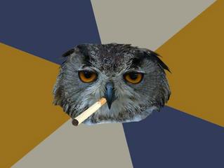 Arts Avenue's  35 Top Art Student Owl Memes