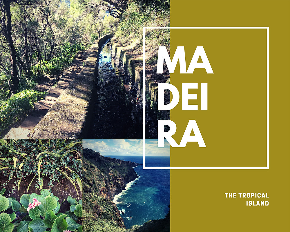 Madeira the tropical island