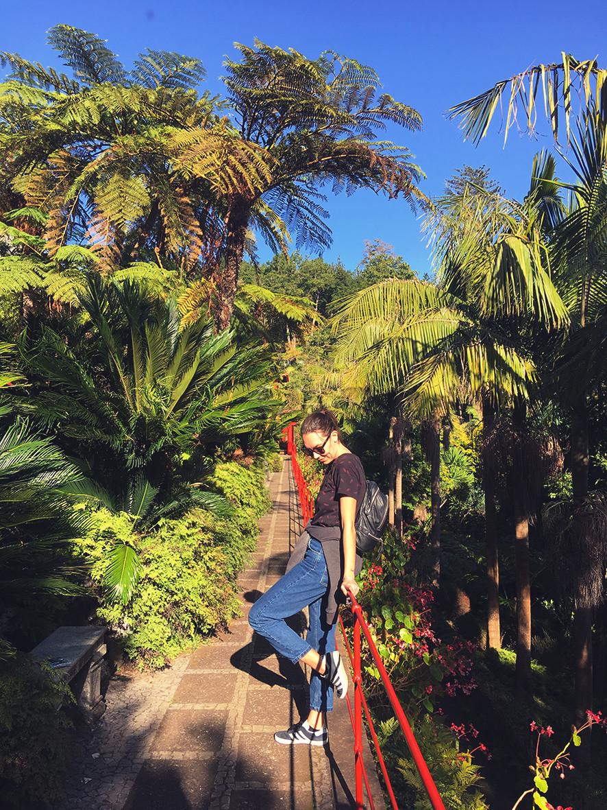 tropical garden madeira