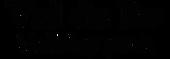 логотип вальдебо_edited.png