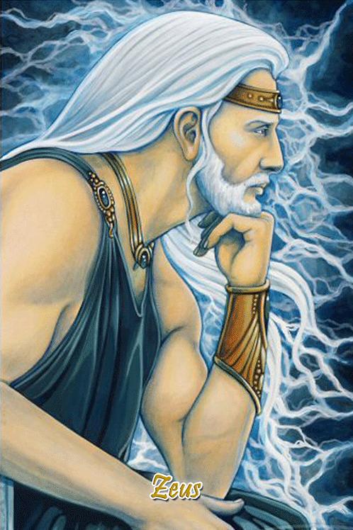 Zeus - profile