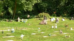 Pet+Cemetery.jpg