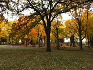 Fall+10.jpg