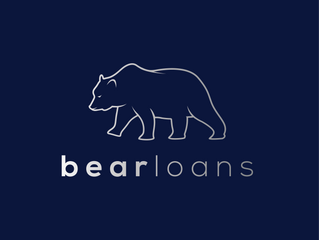 Which Bear Business Loan is your perfect partner?
