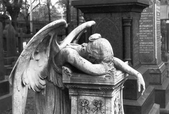 weepingangel2-jpg.jpg