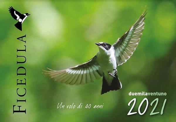Calendario Ficedula.jpg