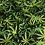 Thumbnail: Marijuana - Black