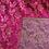 Thumbnail: Fuchsia Metallic Paisley - Brocade