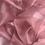Thumbnail: Organza Cristal - Dusty Rose