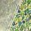 Thumbnail: Cactus Garden
