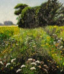 meadow2a.jpg