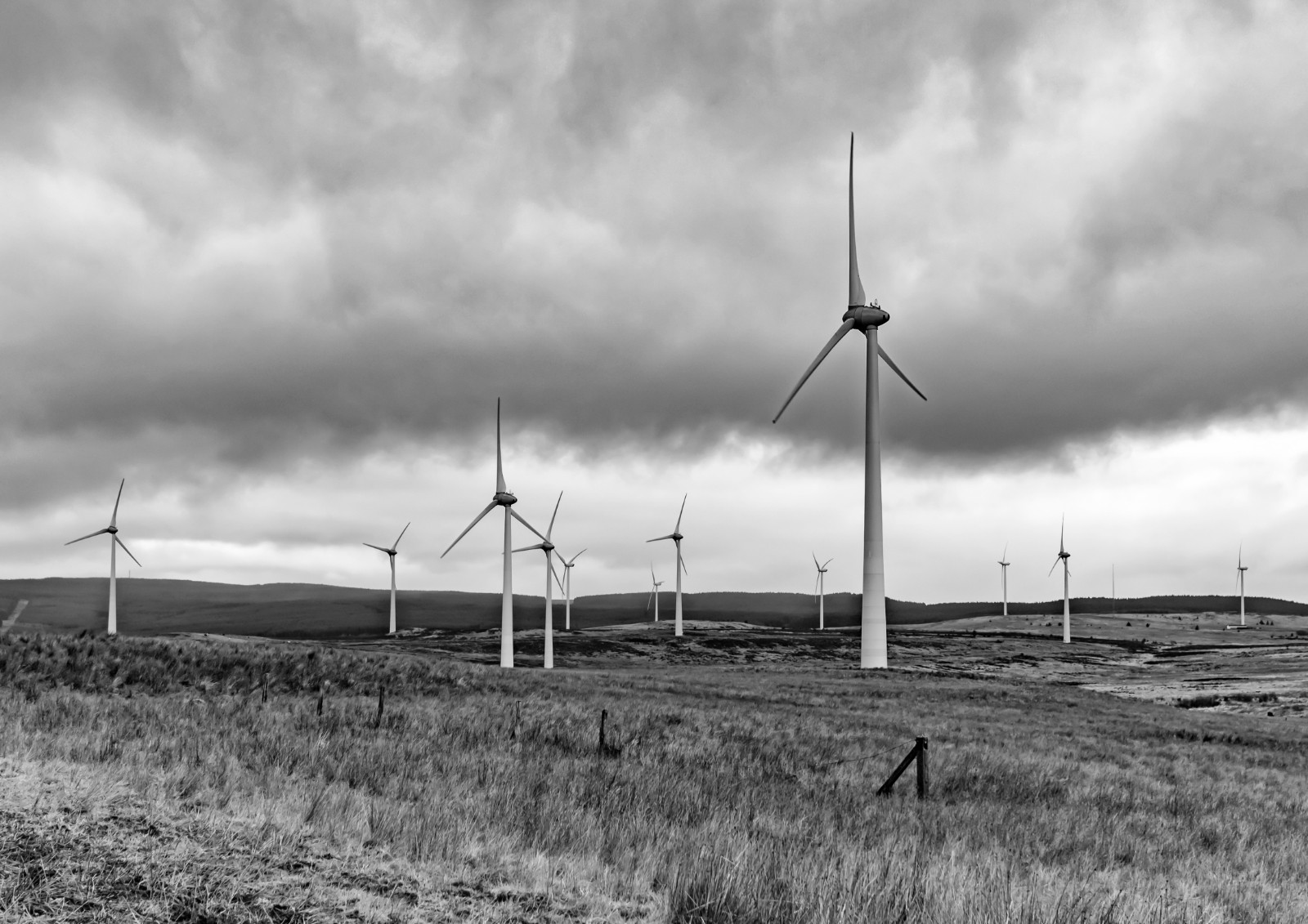 MONO - Windfarm by William Allen (9 marks)