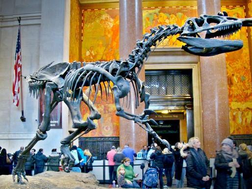 Muzeul de Istorie Naturala din New York
