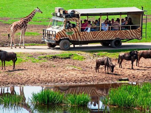 Serengeti Park Germania