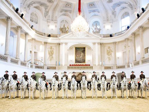 Spectacol Şcoala Spaniolă de Echitaţie de la Viena
