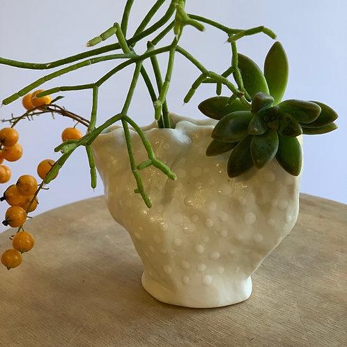 Clam vase