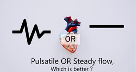 Pulsatile OR steady flow, which is better?