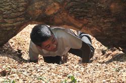 Wildwood Den with crawl spaces