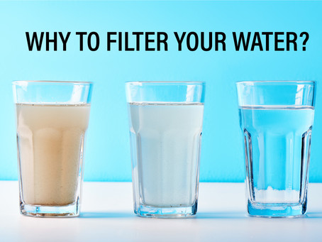 Are Water Filters worth it?