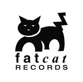 fat cat .jpg
