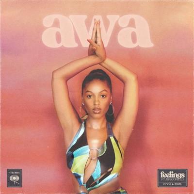 AWA feat. JB Scofield 'Feelings'
