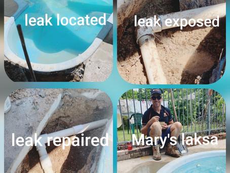 Pool leak of the week!