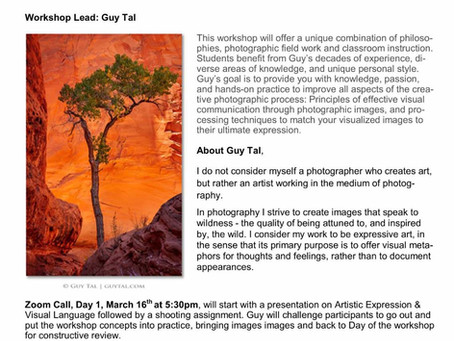 Guy Tal - Artistic Expression and Visual Language Workshop!