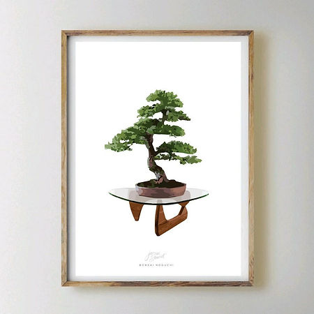 Jacqui Stewart prints, Bonsai Noguchi.jp
