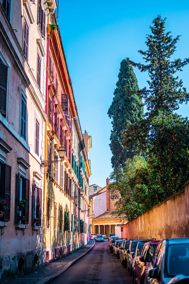 romesavannalim-8.jpg