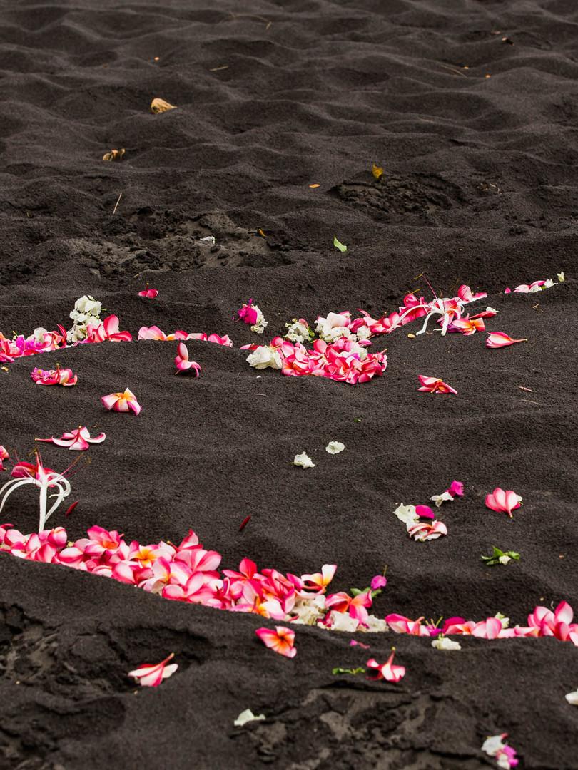 Big Island Hawaii Adventure Elopement We