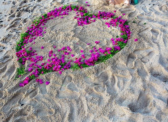 Flower Heart In Sand