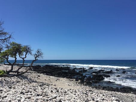 Spotlight on Holoholokai Beach