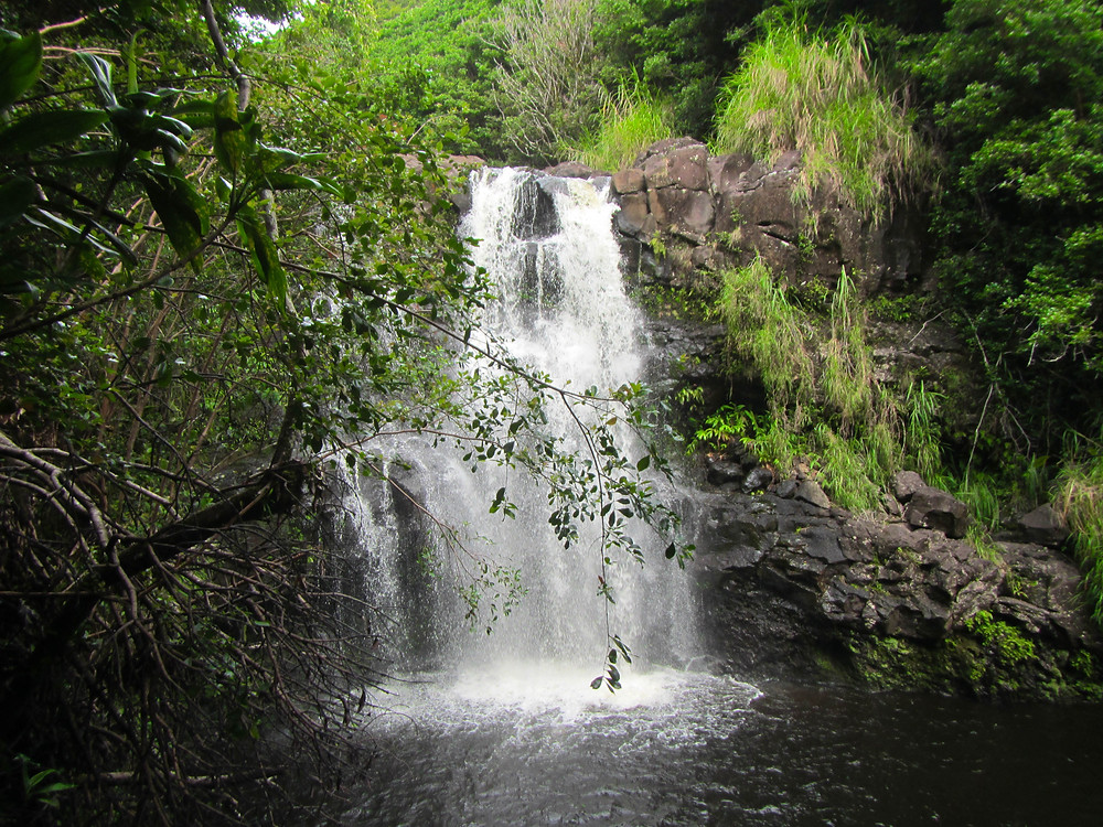 Kona Wedding Officiant Private Waterfall Wedding