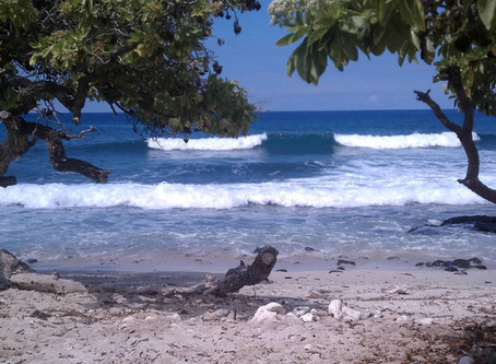 A Hidden Gem - Private Hawaii Beach Wedding