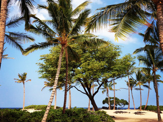 The Day of Three Beaches - Kekaha Kai
