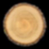 woodchunk3.png
