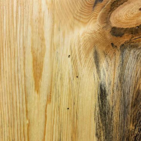 Blue Stain Ponderosa Pine