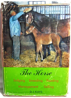 THE HORSE (Judging, Breeding, Feeding...) by Kays 1953