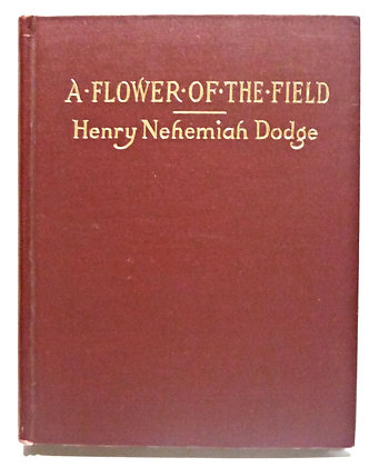 A Flower of the Field by Henry Dodge 1914
